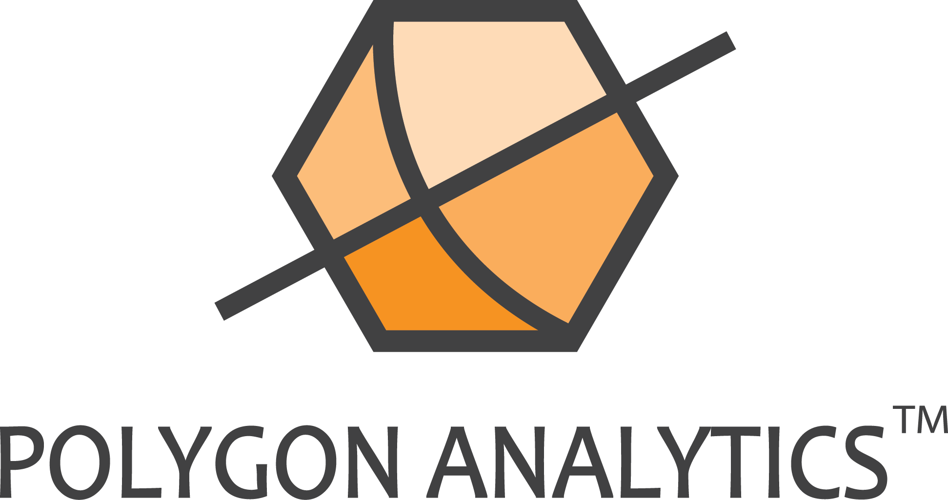 Polygon Analytics